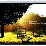 Экран настенный Lumi PSAC120 1