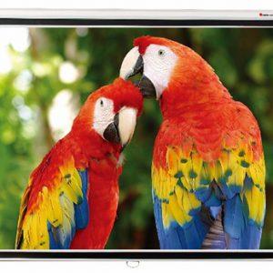 Проекционный экран Redleaf SGM-1104